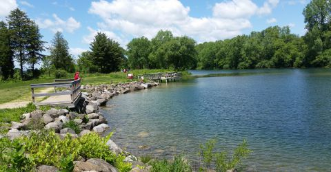 Image result for salmo pond