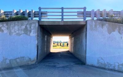 North Mendota Trail